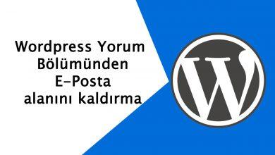 Wordpress Yorum Alanından E-Posta Kaldırma