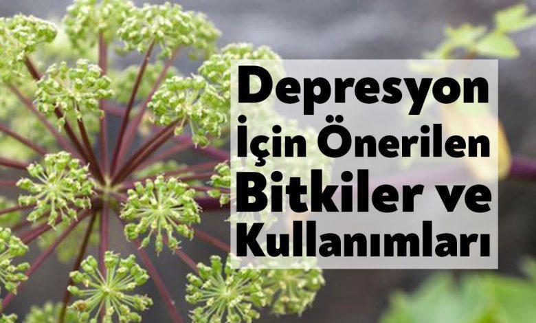 Depresyon için Önerilen Bitkiler