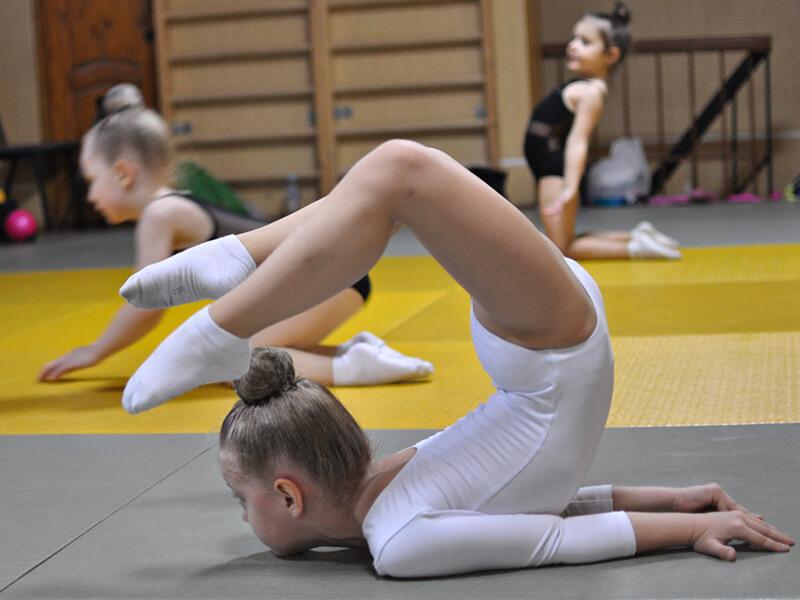 Profesyonel Jimnastik Kursu
