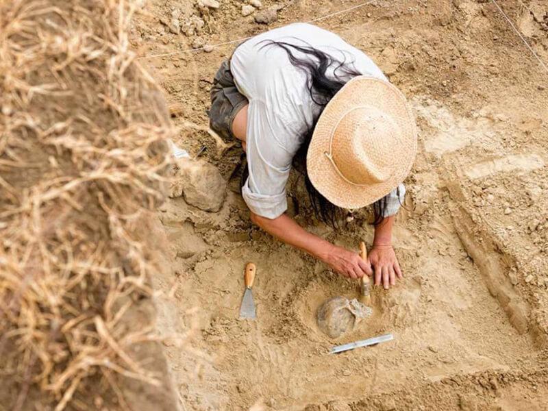 Arkeolog Olma Şartları Nelerdir?