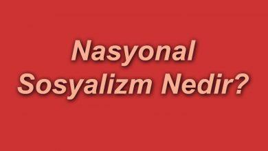 Nasyonal Sosyalizm