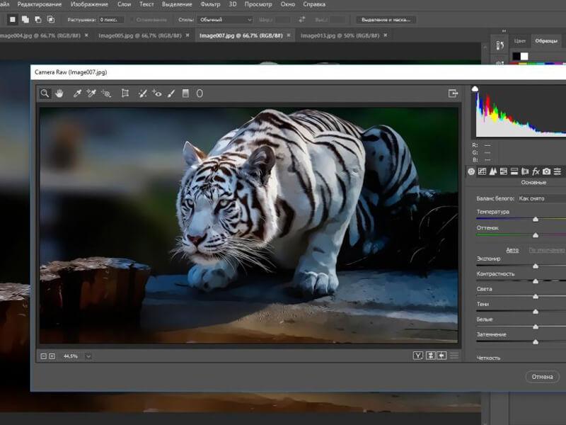 Adobe Photoshop Çalışma Sayfası Meydana Getirme