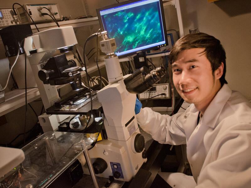 Biyomedikal Mühendisi Nasıl Olunur?