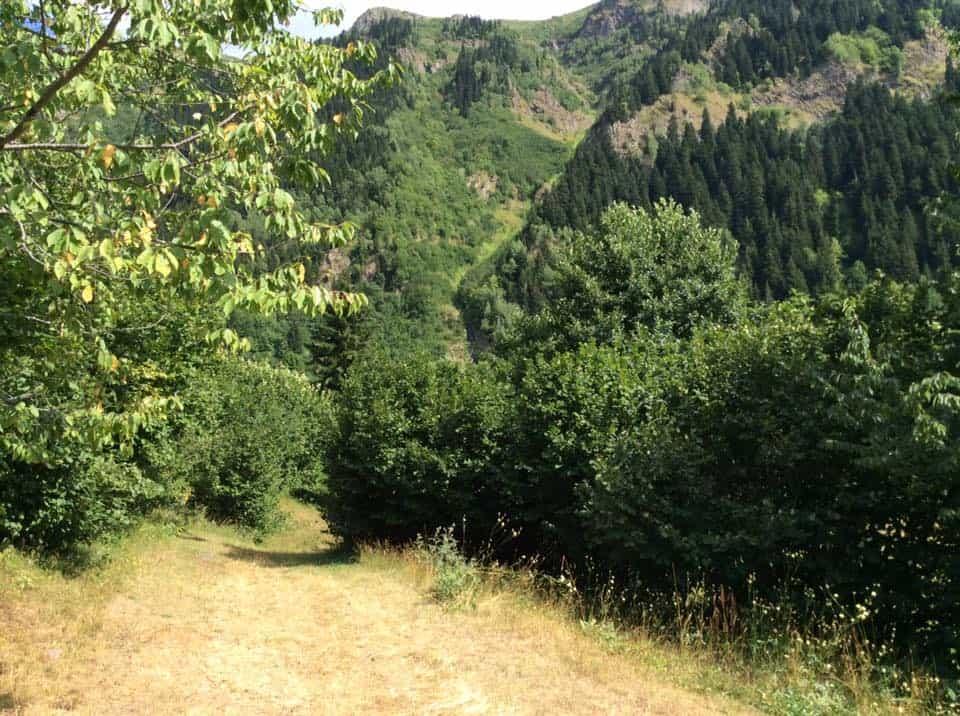 rutav-yukarı-koyunlu-köyü-bizimle-gez-1