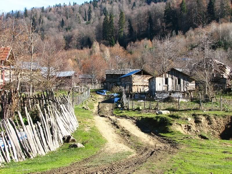 Bölüklü Yaylası Kamp Alanı