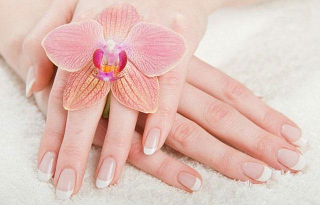 Farmasi Winter Beauty El Kremi Özelliği Nedir