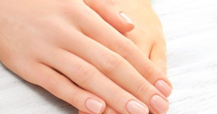Farmasi Winter Beauty El Kremi Faydaları