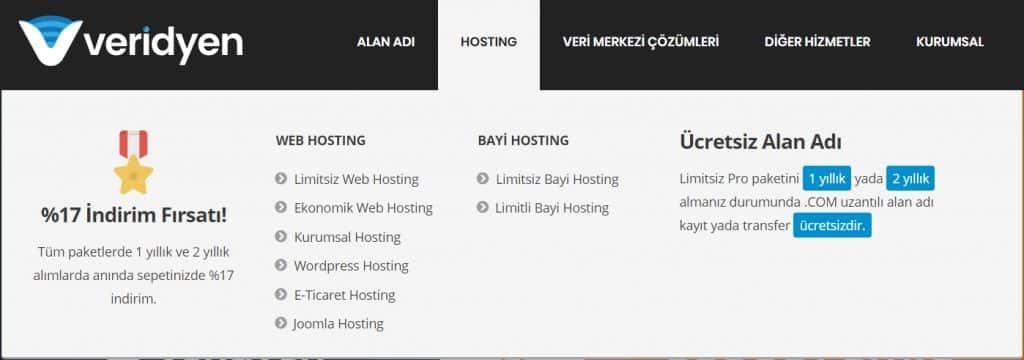 veridyen hosting