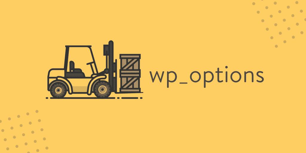 wp-options.php veritabanı temizleme